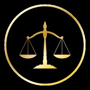 Lawyer 116